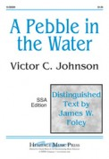 Pebble In The Water, A