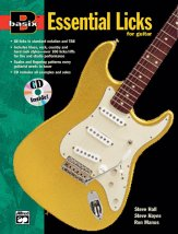 Basix Essential Licks For Guitar (Bk/C