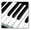 Napkins: Piano Keys (Cocktail Pkg of 20)