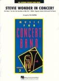 Stevie Wonder In Concert