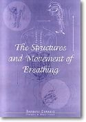 Structures And Movement of Breathing