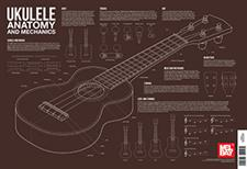 Ukulele Anatomy and Mechanics