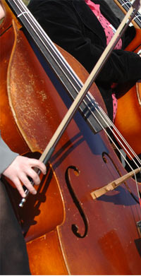 String Orchestra Middle School B